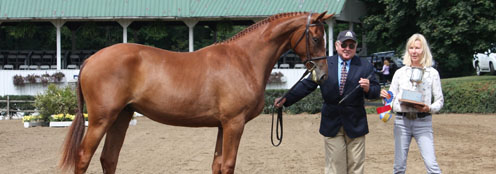 Yearling Futurity Program
